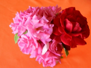 Roses from my Las Cruces garden.  © Norine Dresser photo collection, 2014.