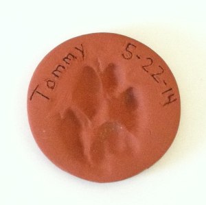 Tommy paw print.  © Photo by Mariah Chase, Norine Dresser photo collection, 2014.