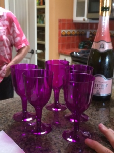 Pink Bubbly with purple glasses. © Norine Dresser photo collection, 2015.