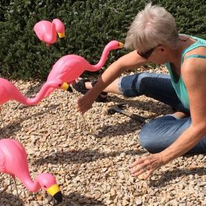 Roxana transplanting the birds to my backyard. © Norine Dresser photo collectio, 2015