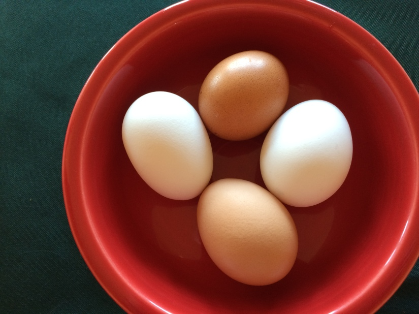 Four raw eggs. © Norine Dresser photo collection, 2015.