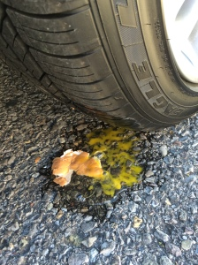 Splat again! Egg crushed by new car tire. © Norine Dresser photo collection, 2015.