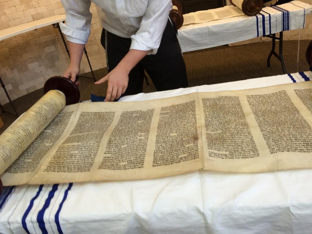 Rabbi Bery Schmukler rolls open the scroll rescued in Hamburg on Kristallnacht. © Norine Dresser photo collection, 2016.